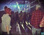 Fridge Festival 2014